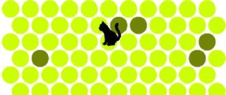 game 2 330x140 - Игра - не дай убежать кошке