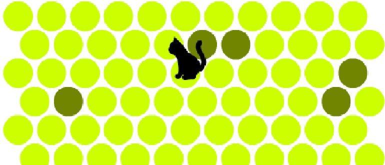 game 2 770x330 - Игра - не дай убежать кошке