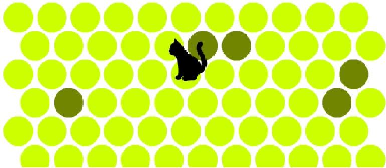 Игра — не дай убежать кошке