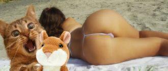 interesnye smeshnye 6 0 1 330x140 - Картинки, комментарии, мемы, анекдоты, соцсети