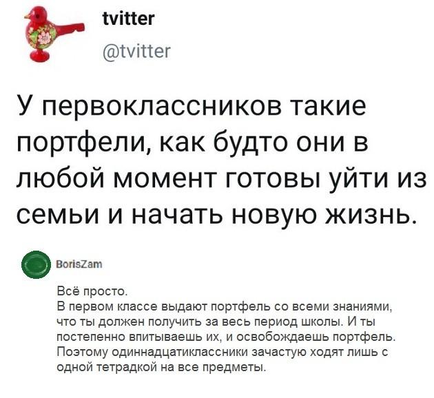 Комментарии из социальных сетей #2