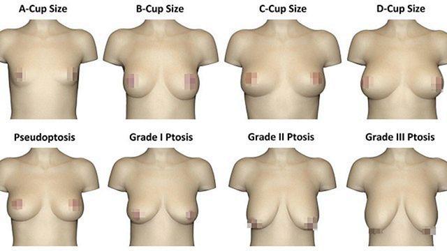 Ученые выяснили, что в женской груди привлекает наибольшее внимание